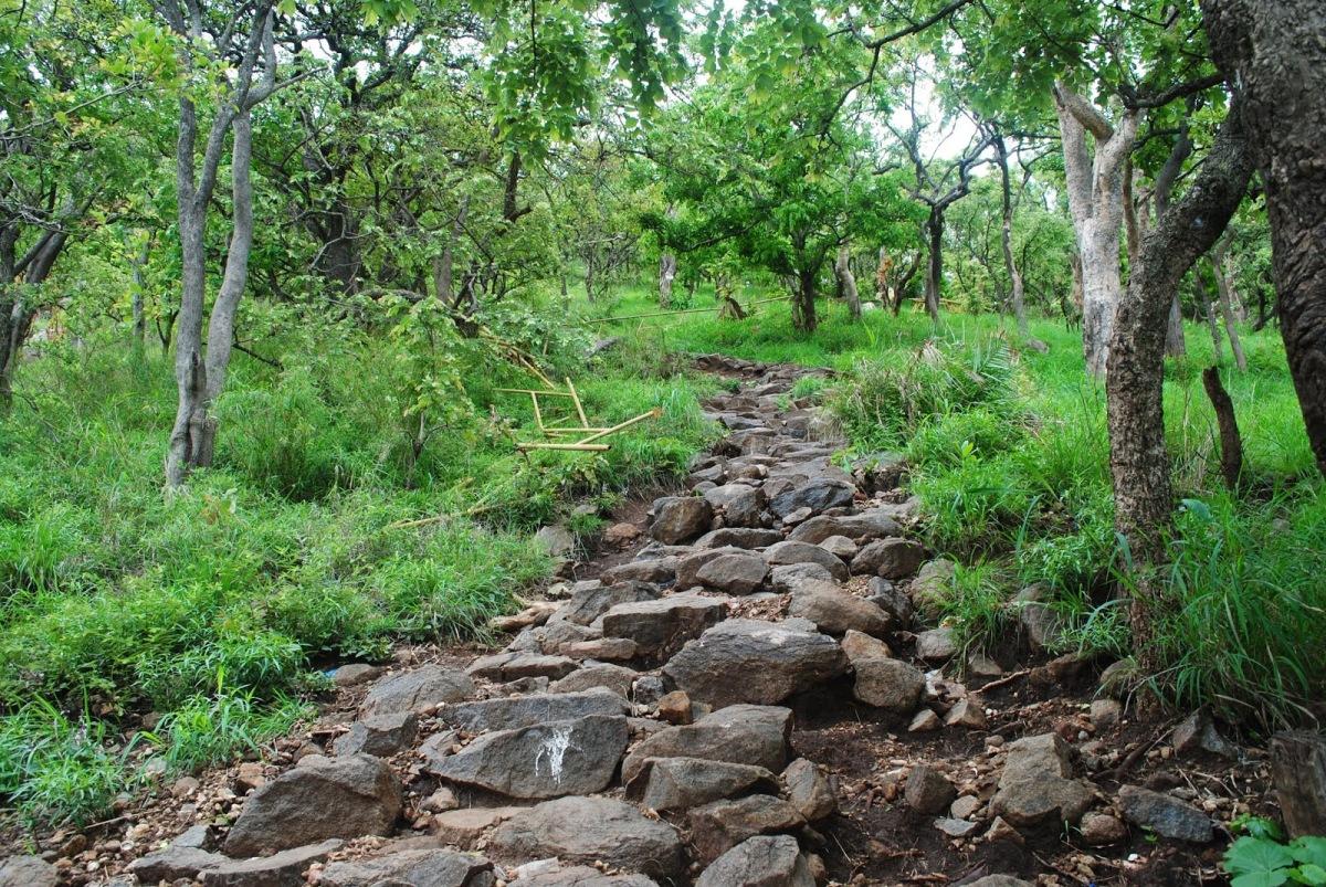 Parvathamalai (Parvathahill ) – Trekking/Pilgrimage – P4