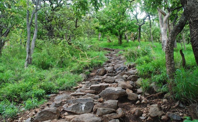 Parvathamalai (Parvathahill ) – Trekking/Pilgrimage –P4