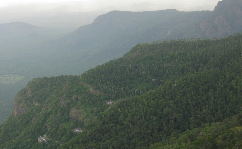Yercaud – Best Picnic Spot for a Weekend – P2