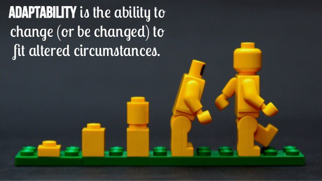 True or False: Multi-tasking is Closely Related to Adaptability | by Carmen  Ruan | Multi-task Basics | Medium